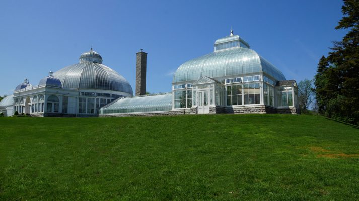 Buffalo-and-Erie-County-Botanical-Gardens-Renovations-to-Houses-#2-&-#3-01